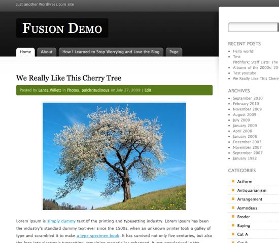 Wordpress Fusion Theme