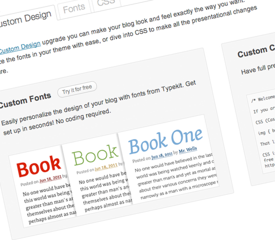 WordPress.com's Custom Design release disappoints in functionality, is prohibitively expensive.